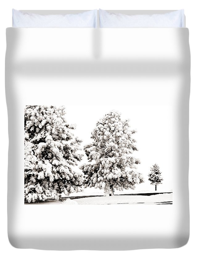 Trees Duvet Cover featuring the photograph Family Of Trees by Marilyn Hunt