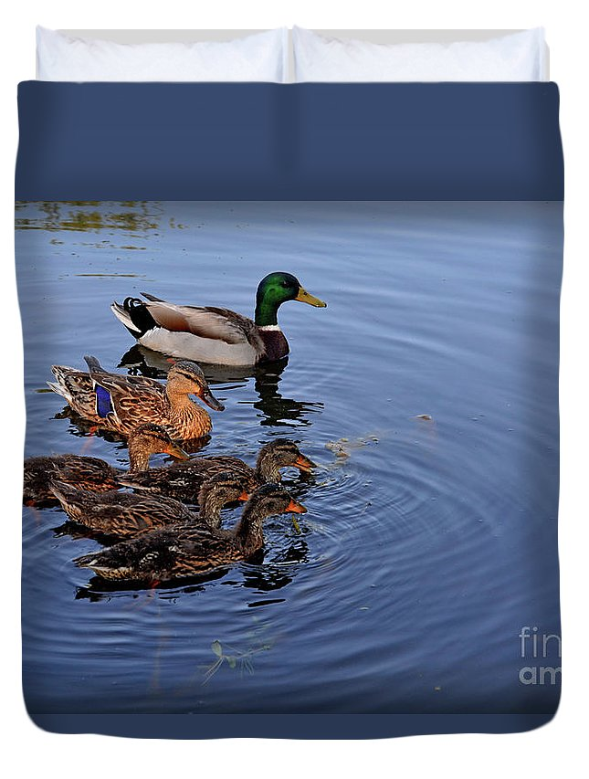 Duck Duvet Cover featuring the photograph Family Outting by Aaron Shortt