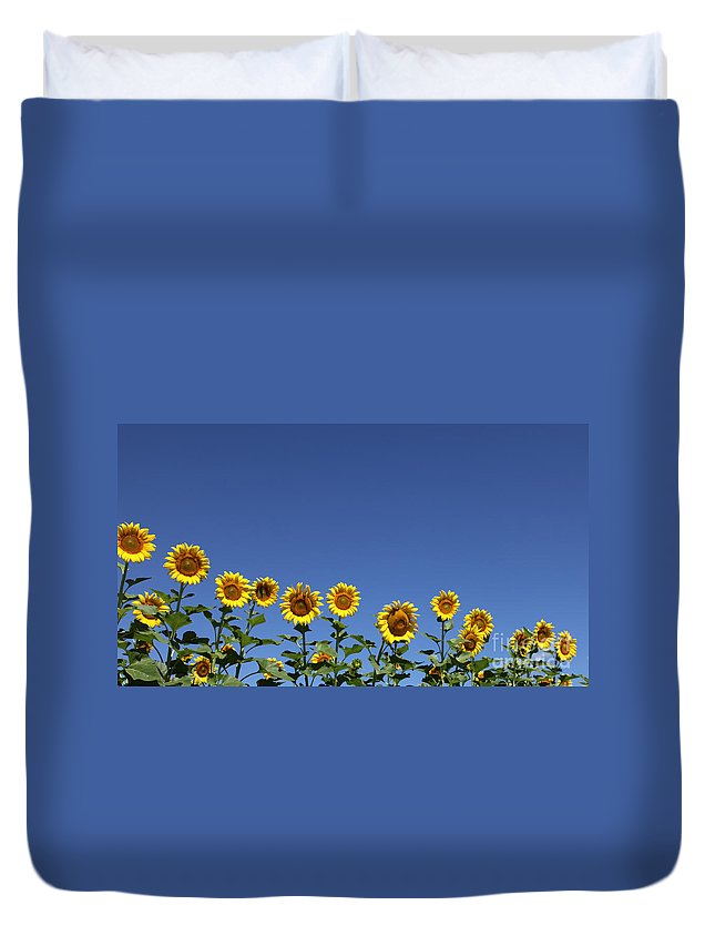 Sunflowers Duvet Cover featuring the photograph Family time by Amanda Barcon