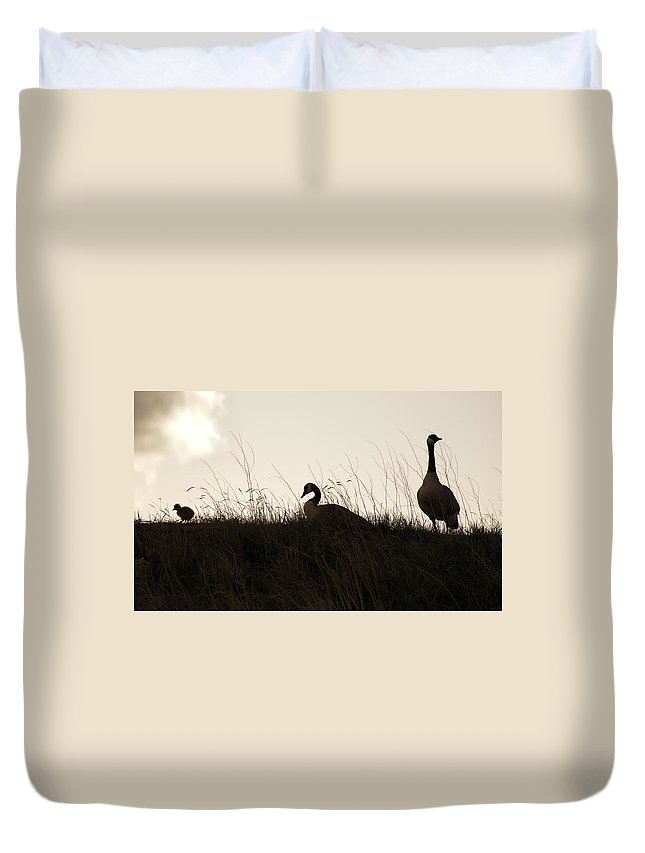 Family Duvet Cover featuring the photograph Family Time by Marilyn Hunt