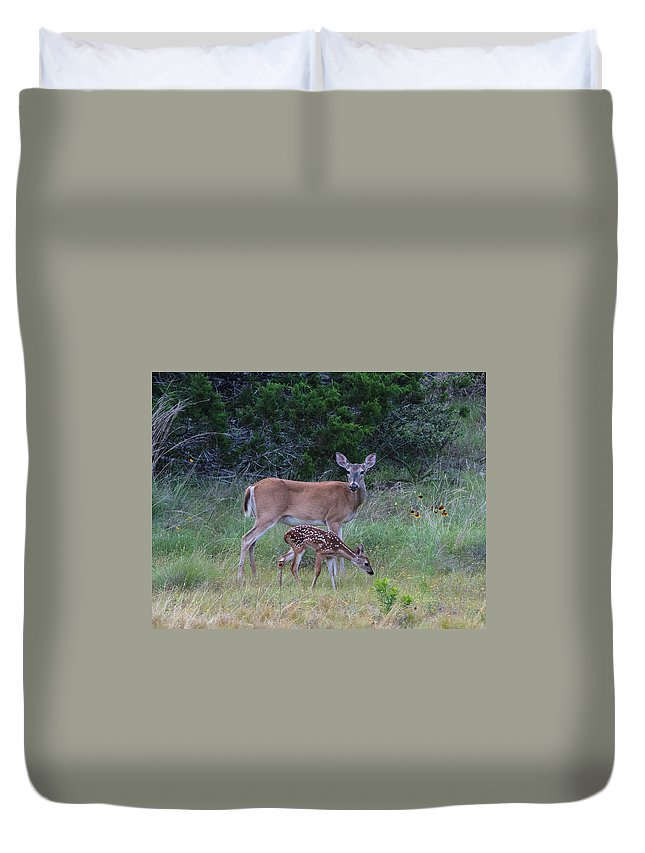Hill Country Duvet Cover featuring the photograph Family Visit by Gary Norfolk