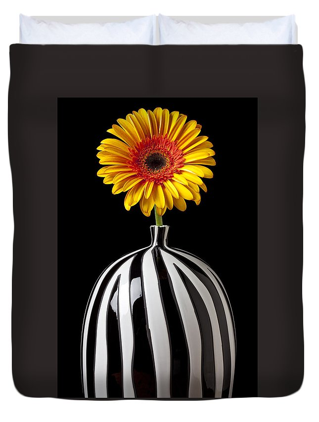 Daisy Flower Vase Petals Yellow Duvet Cover featuring the photograph Fancy Daisy In Stripped Vase by Garry Gay