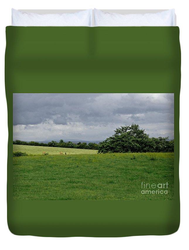 Beecraigs Duvet Cover featuring the photograph Faraway Rain. by Elena Perelman