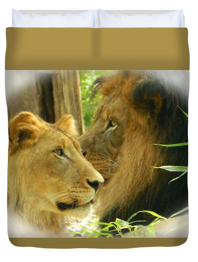 Father And Son Duvet Cover featuring the photograph Father And Son by Emmy Vickers