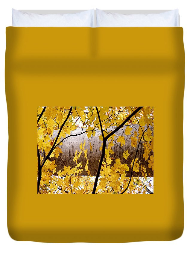 Father Nature Duvet Cover featuring the photograph Father Nature by Ed Smith