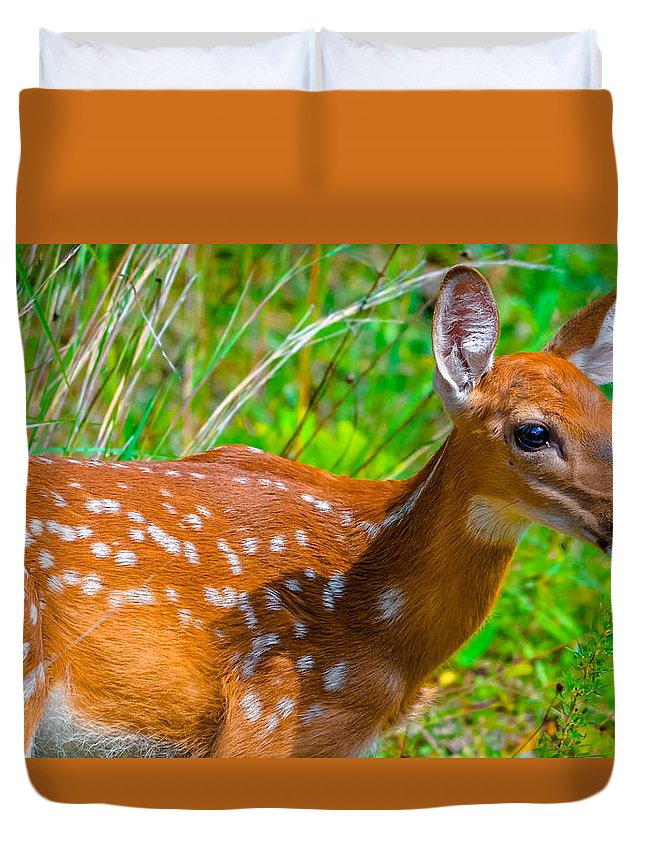 Duvet Cover featuring the photograph Fawn 4 by Brian Stevens