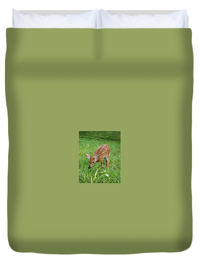 Nature Duvet Cover featuring the photograph Fawn by Hannah Crouse