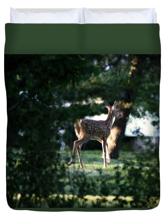 Fawn Duvet Cover featuring the photograph Fawn by Lindsey McDonald