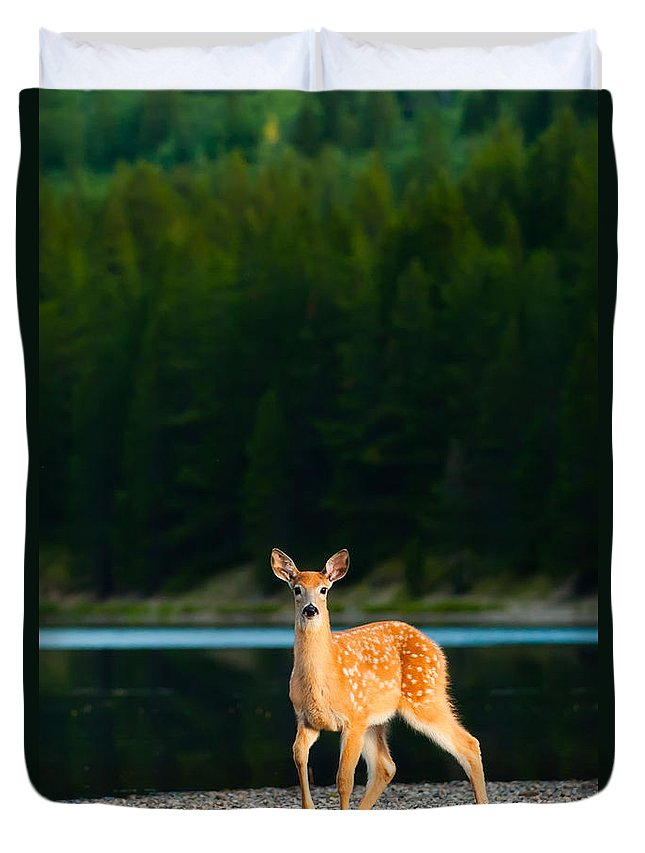 2006 Duvet Cover featuring the photograph Fawn by Sebastian Musial