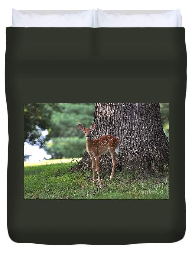 Fawn Duvet Cover featuring the photograph Fawn by Todd Hostetter