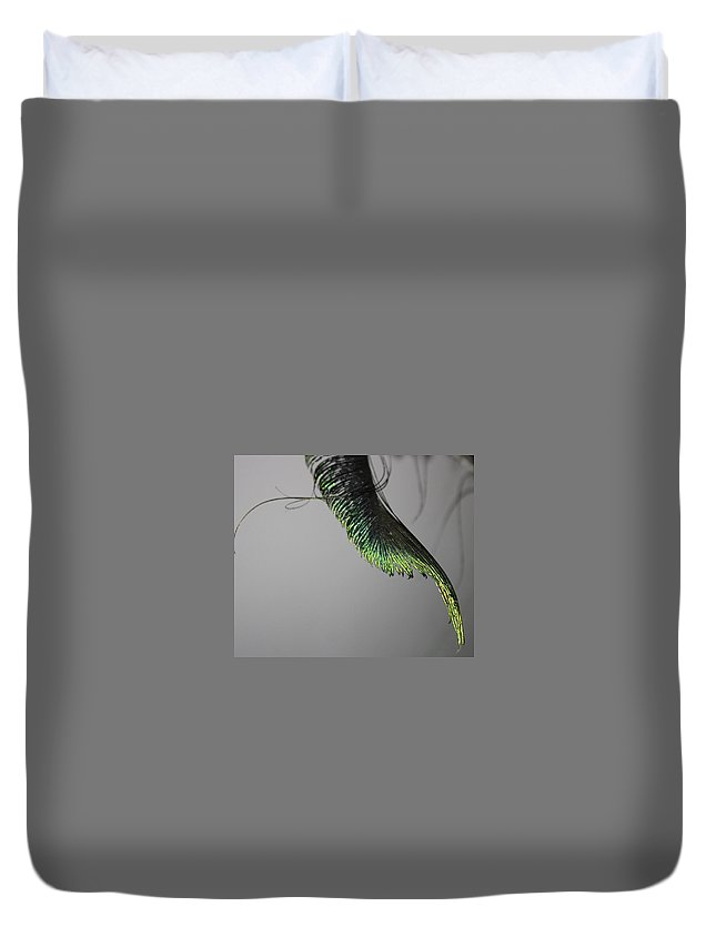 Feather Duvet Cover featuring the photograph Feather by Fae Scalmazzi