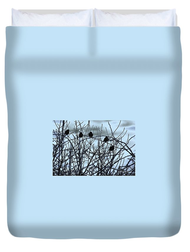 Birds Duvet Cover featuring the photograph Feathered Friends by Karol Livote