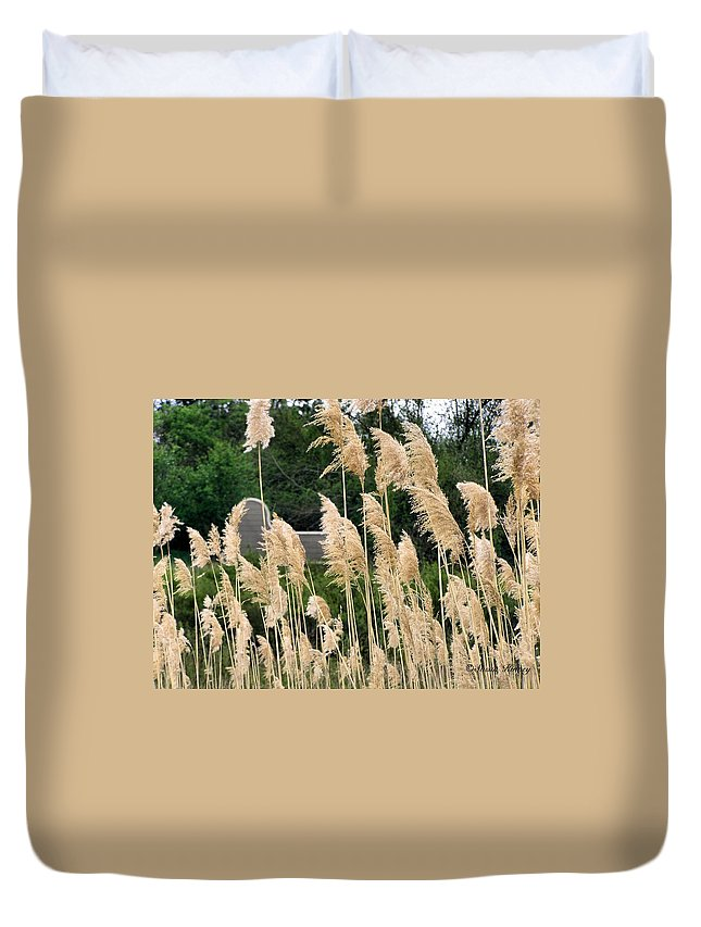 Weeds Duvet Cover featuring the photograph Feathers by Susan Kinney