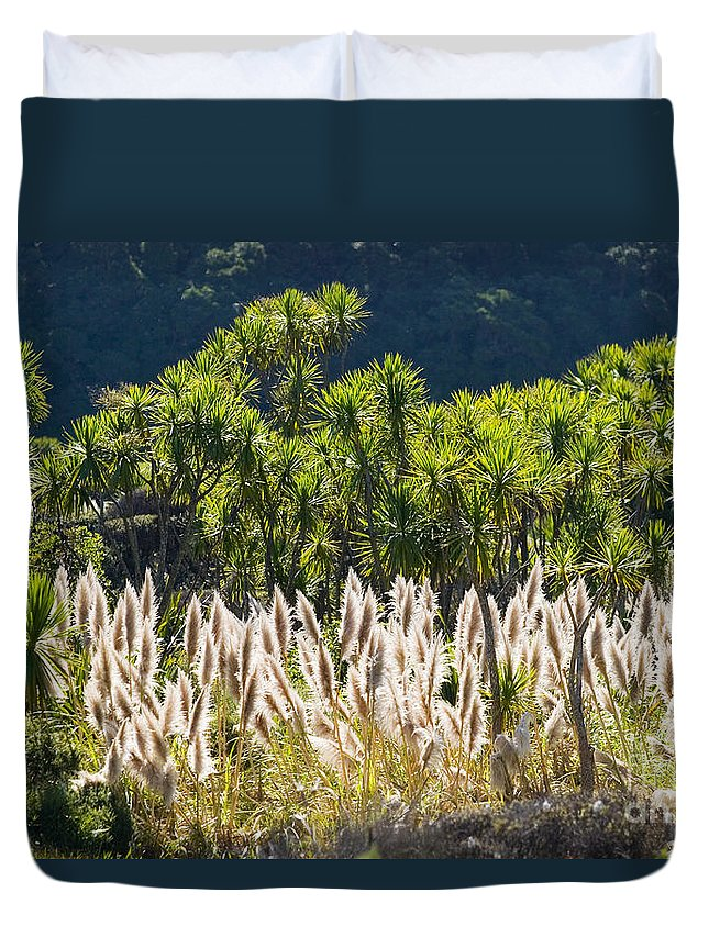 Afternoon Duvet Cover featuring the photograph Feathery White Plants by Tomas del Amo - Printscapes