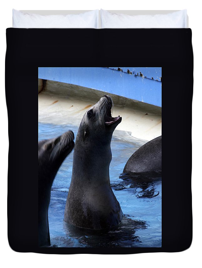 Duvet Cover featuring the photograph Feeding Time by Kenneth Campbell