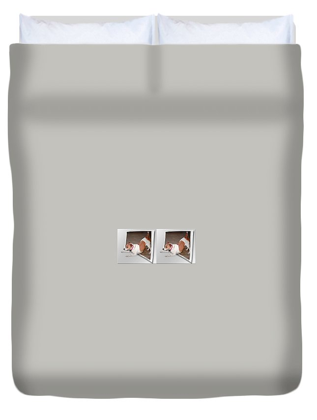 3d Duvet Cover featuring the photograph Feeling Frisky - Cross Your Eyes And Focus On The Middle Image by Brian Wallace