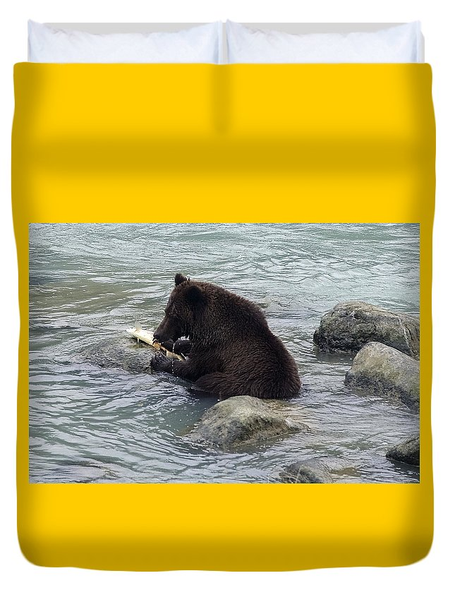 Grizzly Bear Duvet Cover featuring the photograph Feasting Bear by Richard J Cassato