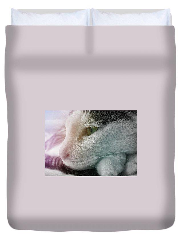 Cat Duvet Cover featuring the photograph Feline Zen by JAMART Photography