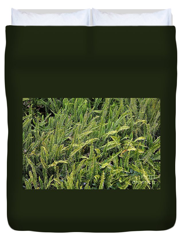 Clay Duvet Cover featuring the photograph Fern by Clayton Bruster