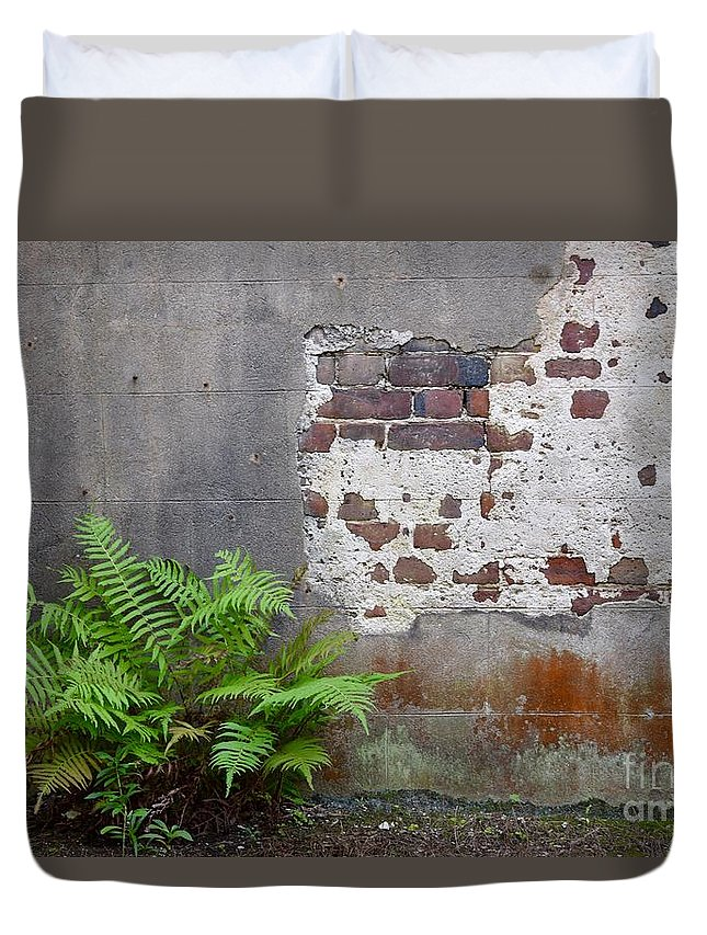 Fern Duvet Cover featuring the photograph Fern by Dennis Knasel