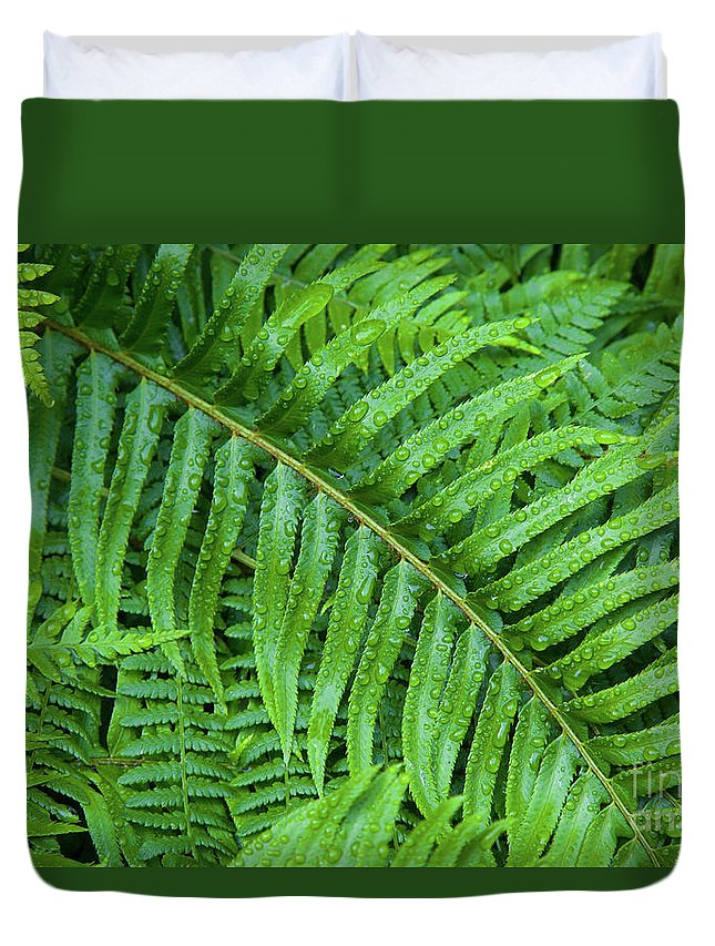 Fern Duvet Cover featuring the photograph Ferns After A Spring Rain by Bruce Block