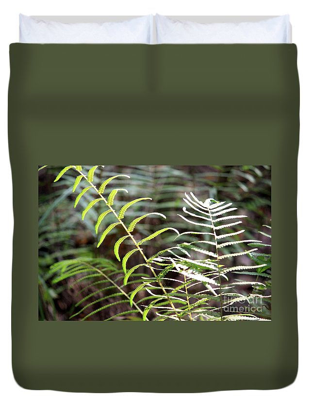 Ferns Duvet Cover featuring the photograph Ferns In Natural Light by Carol Groenen