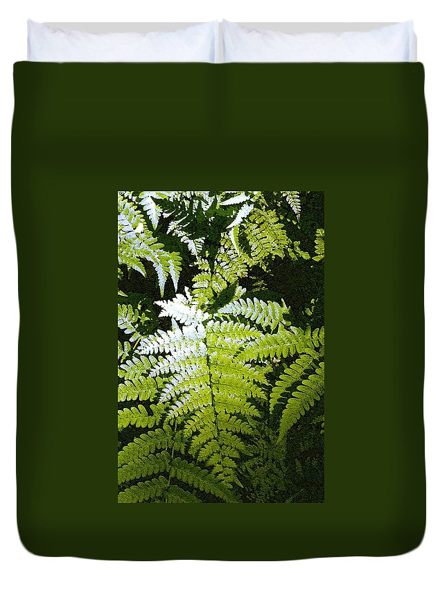 Ferns Duvet Cover featuring the photograph Ferns by Nelson Strong