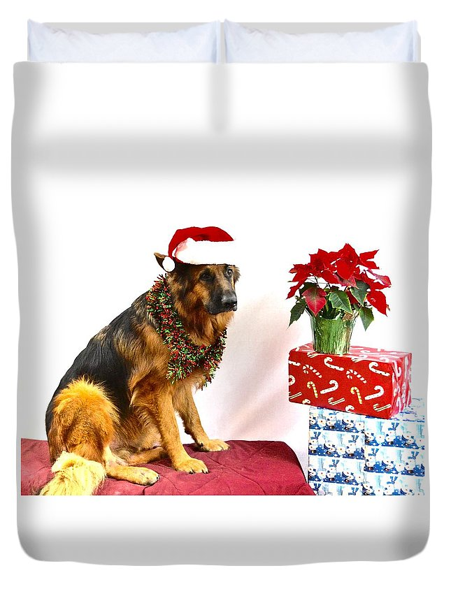 German Shepherd Dog Duvet Cover featuring the photograph Festive Oskar by Danielle Sigmon