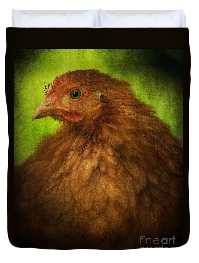 Hen Duvet Cover featuring the photograph Fethers by Rikard Strand