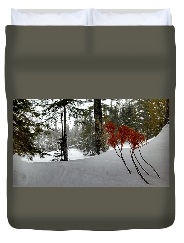 Keweenaw Duvet Cover featuring the photograph The Voice Of The Keweenaw by Scott Wendt Tom Wierciak