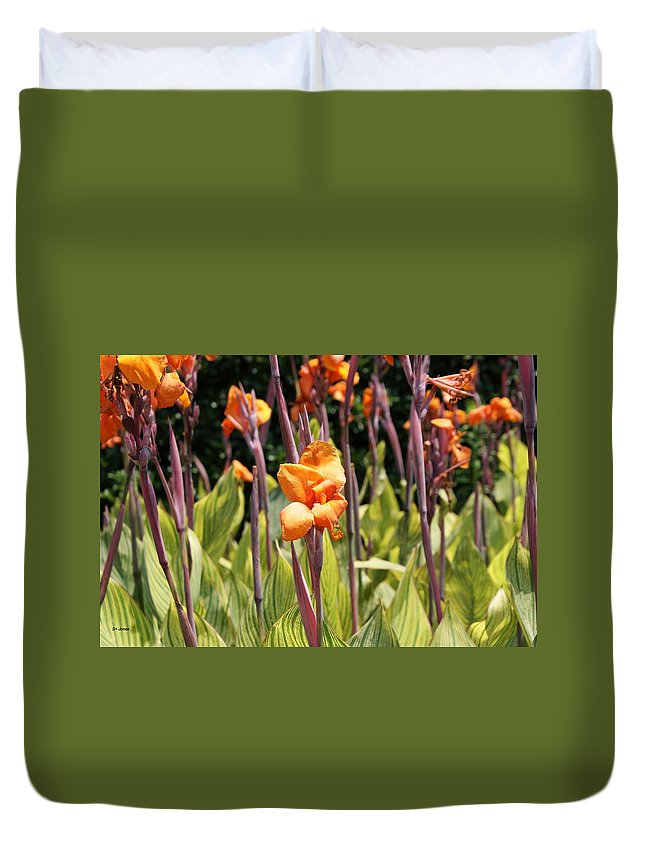 Floral Duvet Cover featuring the photograph Field For Iris by Shelley Jones