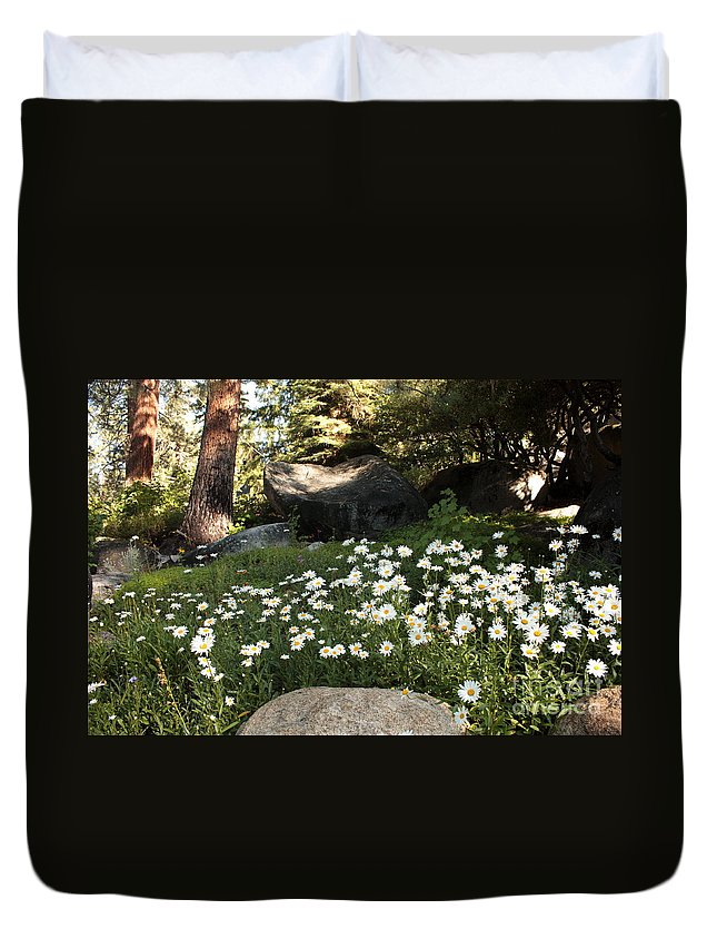 Tahoe Flowers Duvet Cover featuring the photograph Field Of Daisies In Tahoe by Carol Groenen