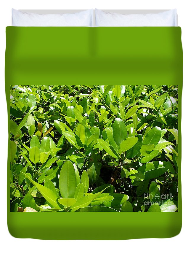 Shrub Duvet Cover featuring the photograph Field Of Green by Maria Bonnier-Perez