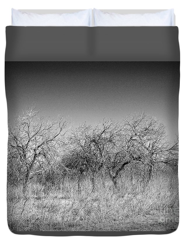 B&w Duvet Cover featuring the photograph Field Of Trees by Gary Richards