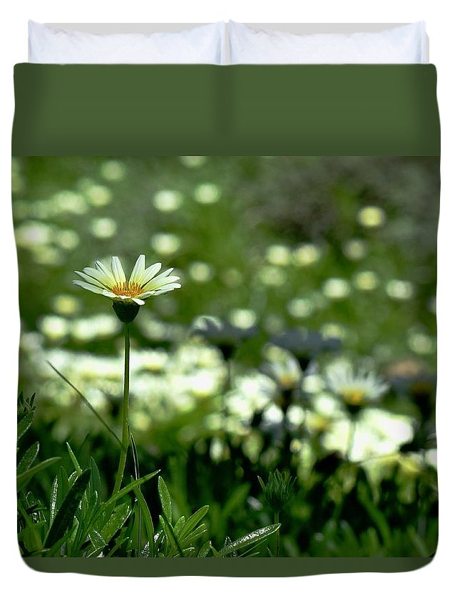 Field Of White Daisies Duvet Cover featuring the photograph Field Of White Daisies by Lynda Anne Williams