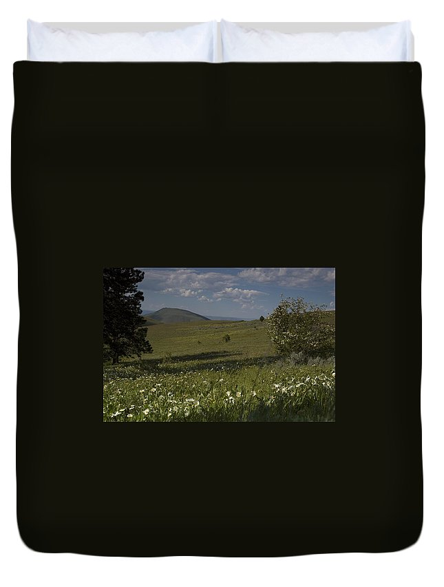 Field Duvet Cover featuring the photograph Field Of White Flowers by Sara Stevenson