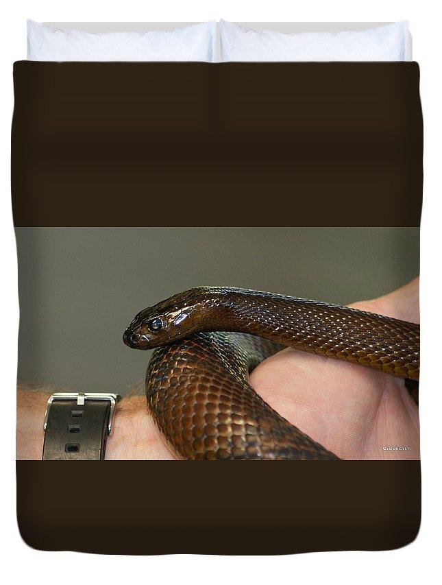 Fierce Snake Inland Taipan 3 Duvet Cover