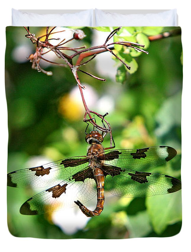 Dragonfly Duvet Cover featuring the photograph Fighting by Marle Nopardi