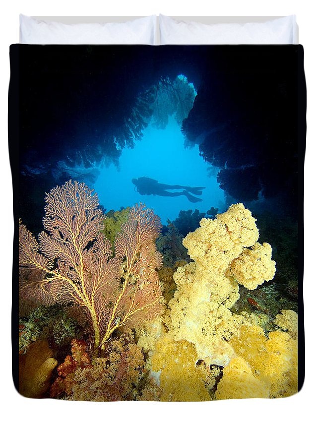 Alcyonarian Duvet Cover featuring the photograph Fiji Underwater by Dave Fleetham - Printscapes