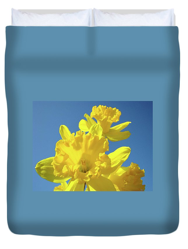 Sky Duvet Cover featuring the photograph Fine Art Daffodils Floral Spring Flowers Art Prints Canvas Baslee Troutman by Baslee Troutman