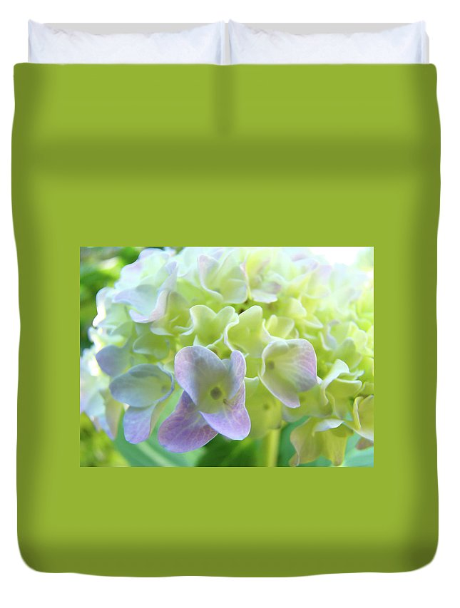 Hydrangea Duvet Cover featuring the photograph Fine Art Prints Hydrangeas Floral Nature Garden Baslee Troutman by Baslee Troutman