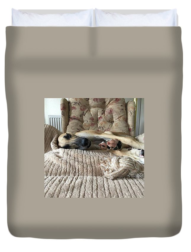 Lurcher Duvet Cover featuring the photograph Finly Found The Journey Back From by John Edwards
