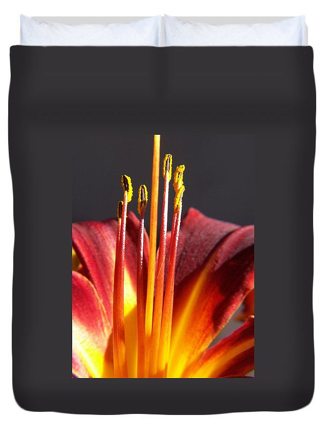 Fire Lily Duvet Cover featuring the photograph Fire Lily by Amy Fose