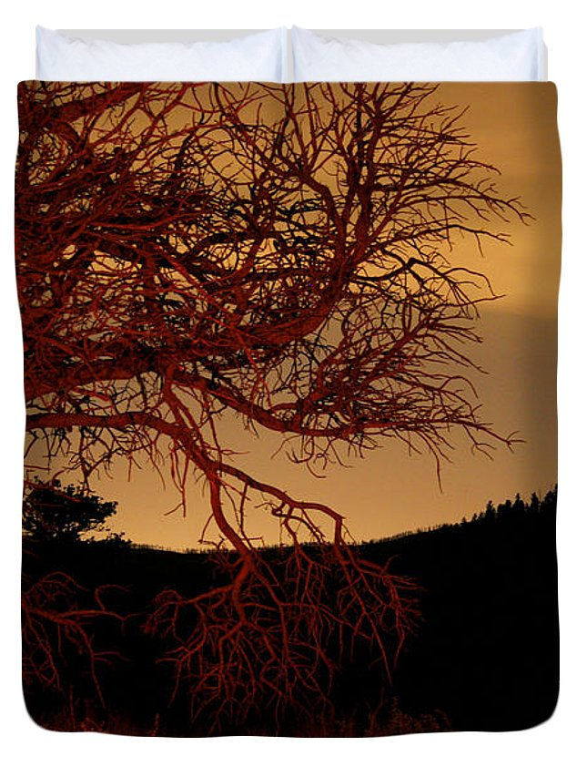 Landscape Duvet Cover featuring the photograph Fire Tree by Jeffery Ball