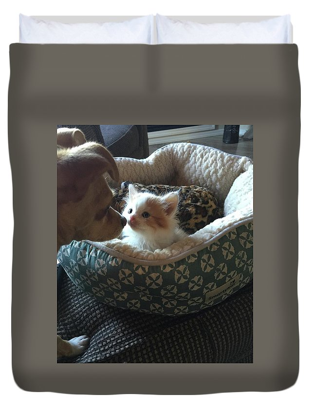 Dog Duvet Cover featuring the photograph First Impressions by Kat Cortez