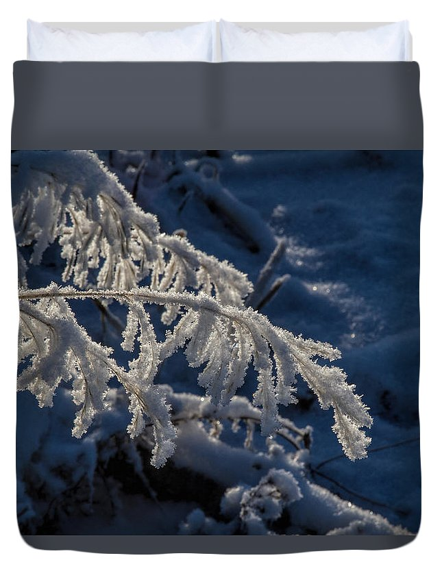 Frost Duvet Cover featuring the photograph First Light by Alana Thrower