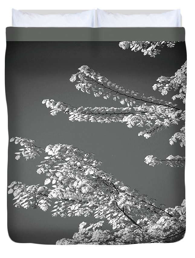 Tree Duvet Cover featuring the digital art First Signs Of Spring V by DigiArt Diaries by Vicky B Fuller