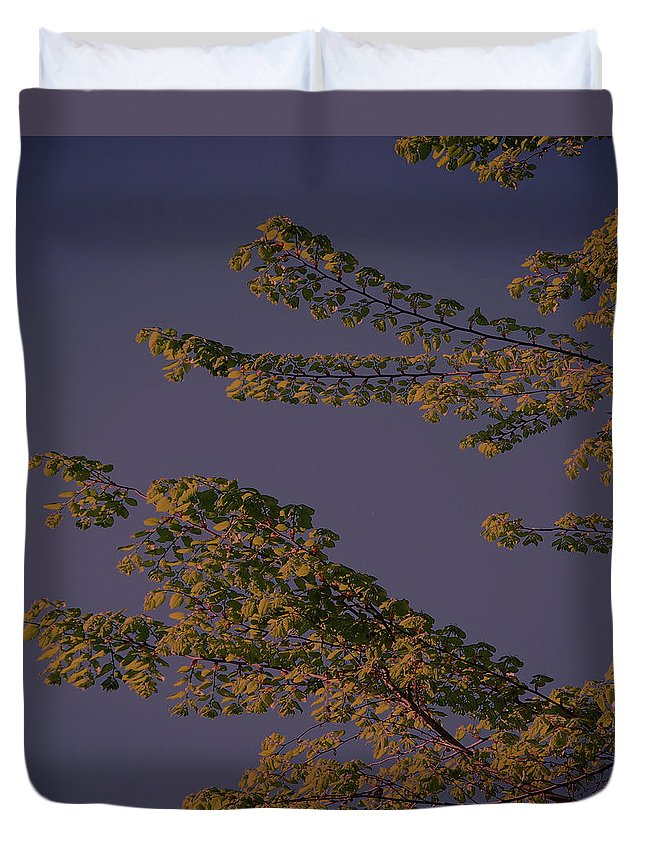 Tree Duvet Cover featuring the digital art First Signs Of Spring Vi by DigiArt Diaries by Vicky B Fuller