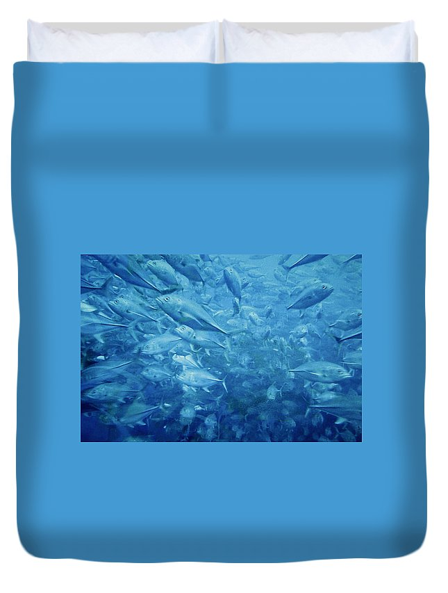 Fish Duvet Cover featuring the photograph Fish Schooling Harmonious Patterns Throughout The Sea by Christine Till