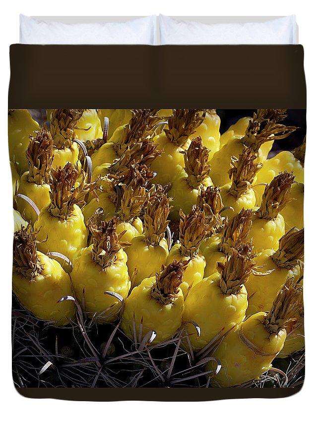 Cactus Duvet Cover featuring the photograph Fishhook Barrel Cactus Fruit by Phyllis Denton